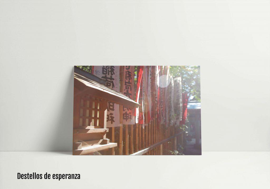 Exposición de miradas etéreas Roberto Blanco, foto 29