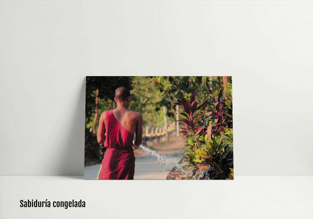 Exposición de miradas etéreas Roberto Blanco, foto 7
