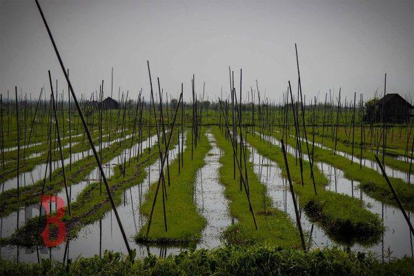 myanmar inle lake landscape