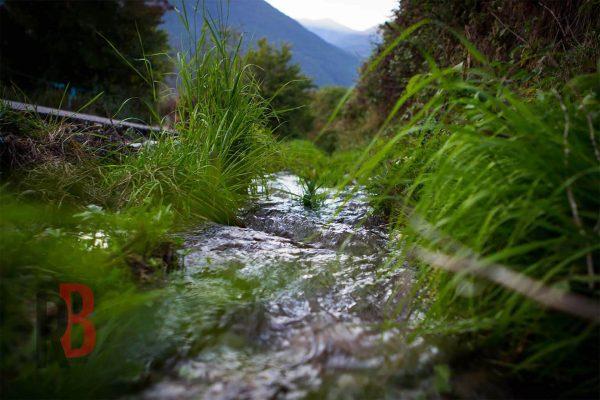 spain stream